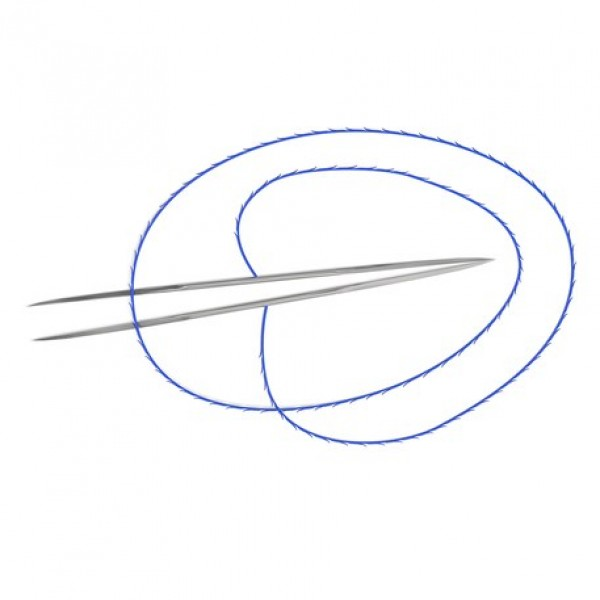 Aptos Needle 2G (AN2G)